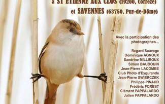 festival-signé-nature-web